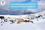 Snowshoeing Experience at Tannourine Cedars Reserve with Green Steps