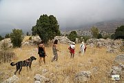 Discover Lebanon with your Pet by Tourleb
