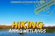 Hiking in Ammiq Reserve (Wetlands) with Lebanon Outdoor Activities