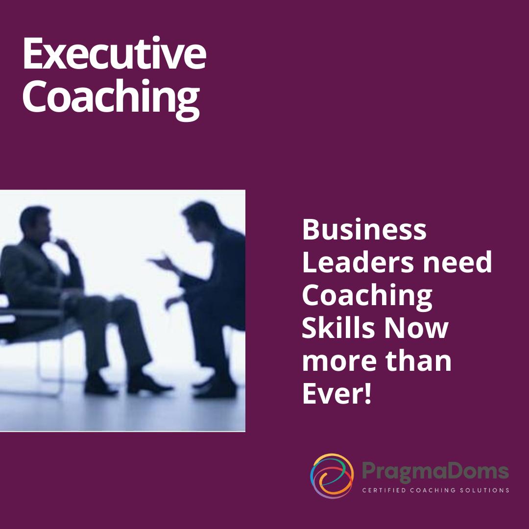 lebtivity coaching executive certification