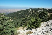 Chouf Reserve Trek with Born2hikers