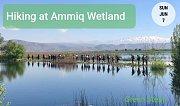 Hiking at Ammiq Wetland with GREEN STEPS