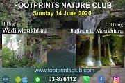 Footprints Advanced Level Hiking from Haret Jandal to Wadi El-Mokhtara