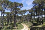 Hiking at Ain Dara Hills with DALE CORAZON