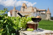 The Basics of French Wine   Free Webinar