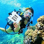 Discover Scuba Diving with SDLL