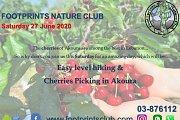 Footprints Cherries Picking & Easy Hiking in Akoura