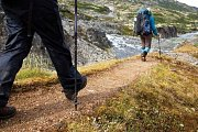Three Forests Hike (Level 5 & 6 ) with Wild Adventures