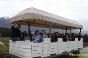 Wine Tour West Bekaa with Vamos Todos