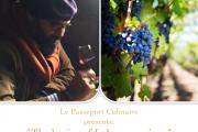 The Basics of Lebanese Wines