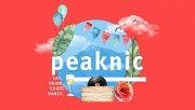 Peaknic at Frozen Cherry