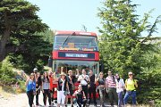 Day Trip with City Sightseeing at the South of Lebanon