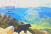 Discover Lebanon with Your Pet with TourLeb
