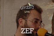 Zef  Live At Yardbird