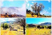 Bchennata Hike with Wild Adventures