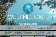 Wellnescape - Full Day at Naas