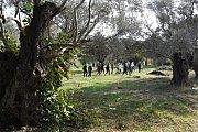 Kawkaba Hasbaya Hike with Vamos Todos