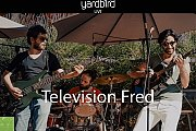 Television Fred Live At Yardbird