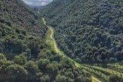Wadi Harba Hike with Vamos Todos