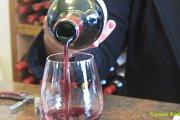 Wine Tour in Keserwan with Vamos Todos