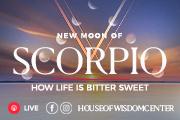 Watch the New Moon of scorpio forecast live on Instagram @houseofwisdomcenter