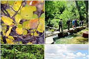 Botmeh River Hike with Wild Adventures