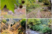 Ras El Matn-Hlaliyeh Hike with Wild Adventures