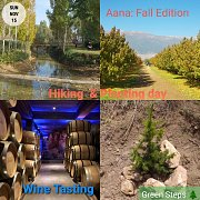 Aana Autumn Leaves: Hiking, Planting and Wine Tasting at Chateau St. Thomas