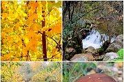 Baadaran-Bisri River Hike with Wild Adventures