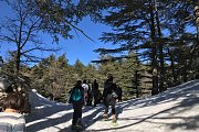 Horsh Ehden Snowshoeing with Dale Corazon