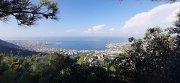 Chnaiir Reserve Sunset with Dale Corazon - Lebanon Explorers Hike