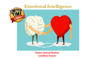 Online emotional intelligence course (round 51) by Amira Samuel Beshay