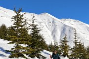 Snowshoeing to Qanat Bakish Cedar Forest with Lebanon by Nature