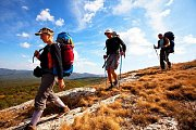 Mshikha Trail Hike with Wild Adventures