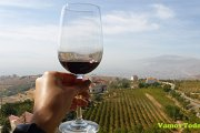 Wine Tour Bekaa with Vamos Todos