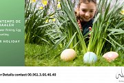 Egg Hunting with Bchaaleh Trails