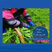 Sliqa (wild herbs picking) Trip at Kobayat