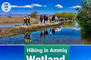 Hiking in Ammiq Wetland with Green Steps