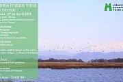 Birdwatching Tour In Ammiq
