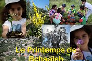 Le printemps de Bchaaleh, Gardening Workshop With Bchaaleh Trails
