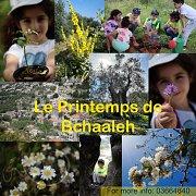 Le printemps de Bchaaleh, Gardening Workshop With Bchaaleh Trails