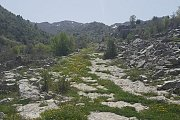3a Dareb Baalaback With bchaaleh Trails