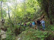 Wadi el Matahen hike with Dale Corazon طريق الشمس at Tannourine - Lebanese Explorers