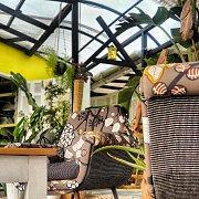 GreenHouse In Batroun - Opening weeks