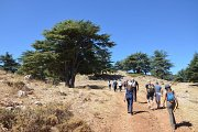 Emperor Hadrian Trail at Arz Niha Batroun - Lebanon Explorers