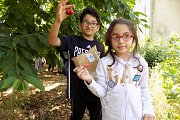 Cherry Picking Day & Tour with The Little Explorer