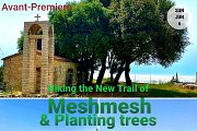 Hiking the New Trail of Meshmesh village & Planting Pine seedlings with Green Steps