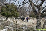 Bkassine Jezzine Hike with Vamos Todos