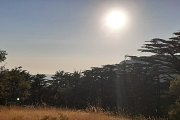 Arz Tannourine Sunset Hike with DALE CORAZON & Bonfire - LEBANON EXPLORERS