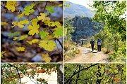 The Hidden Valley-Baskinta Hike With Wild Adventures